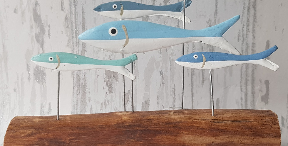 Small blue shoal of fish on driftwood