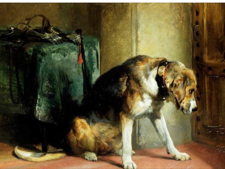 British Dog Portraits: The Rave in the 19th century