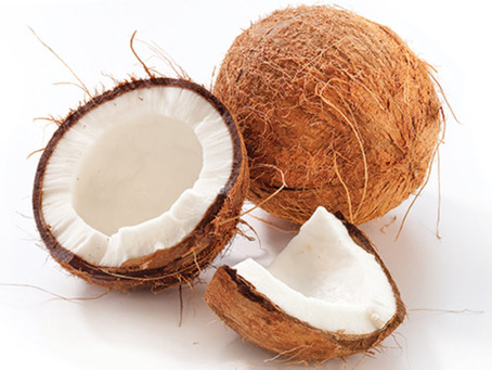 Should Dogs Eat Coconut?