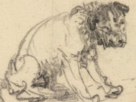 Which famous Northern European artist drew this terrier?