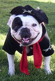 Halloween: Will you be dressing up your dog?