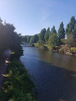 Cedar River in Renton