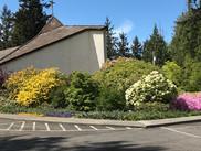 Church building in bloom