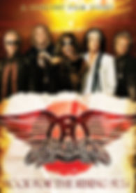 Aerosmith - Rising Sun - DVD - Cover.jpg