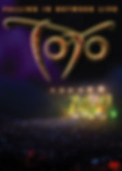 Toto - Falling In Between Live - DVD - C