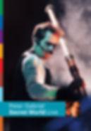 Peter Gabriel - Secret World - DVD - Cov