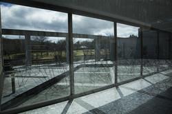Landscape Will - 2013