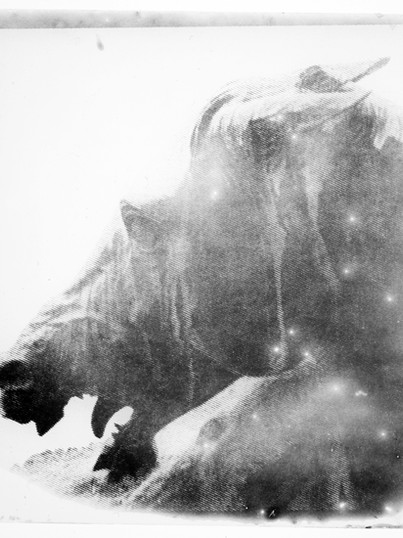 Neptun & Pferd / Eigenarchiv