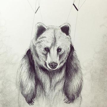 Bearachute