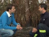 Incendios en Asturias - Aquí la tierra RTVE