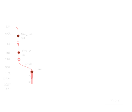 Cross-section-overlay_transparent.png