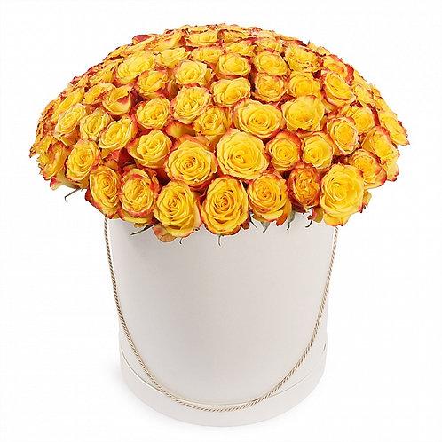 51 роза в шляпной коробке