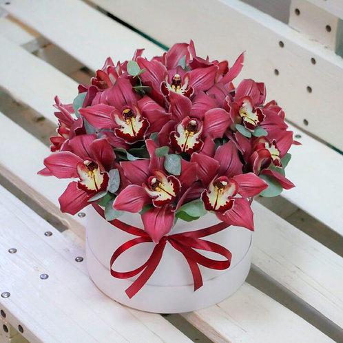 Шляпная коробка орхидей с зеленью