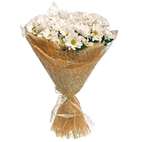 7 кустовых хризантем
