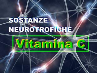 Sostanze Neurotrofiche: La Vitamina C