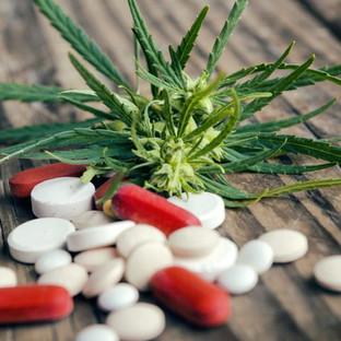 L'uso cronico di cannabis non porta ad una maggiore sensibilità al dolore (a diff.degli oppioidi)