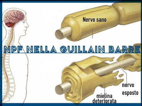 Innervazione cutanea nella sindrome di Guillain-Barré: patologia e correlazioni cliniche