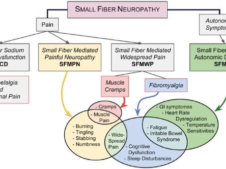Neuropatia delle piccole fibre: classificazione della malattia oltre il dolore e il bruciore