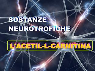 Sostanze neurotrofiche: l'Acetil-L-Carnitina