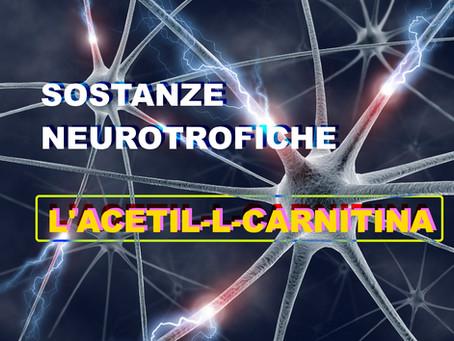 Sostanze neurotrofiche: l'Acetil-L-Carnitina