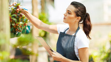 NSW Small Business Grant and Jobs Action Plan Rebate