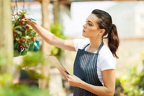 Патент для ИП на услуги по зеленому хозяйству и декоративному цыетоводству