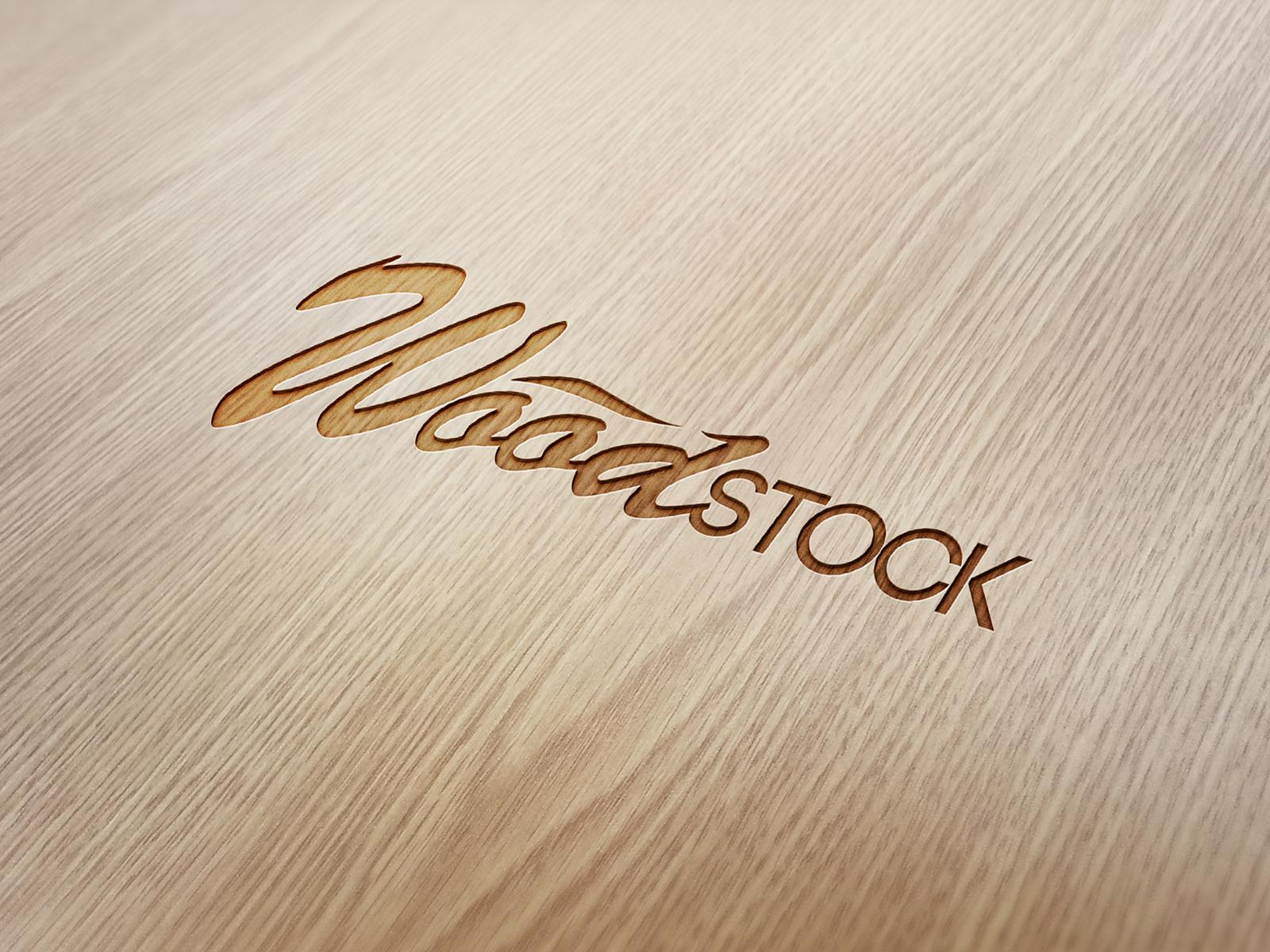 WOOD STOCK GUITARES
