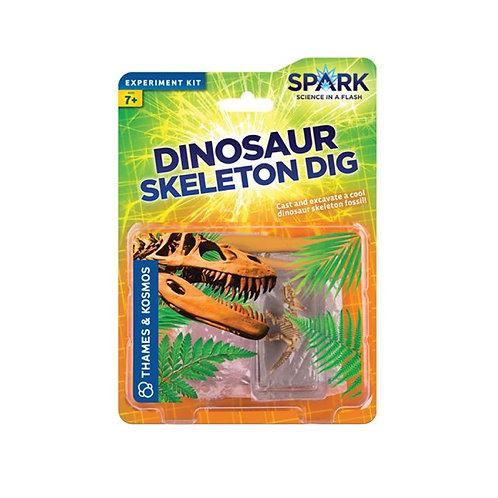 Dinosaur Skeleton Dig
