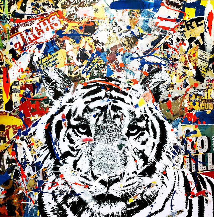CRAZY TIGER