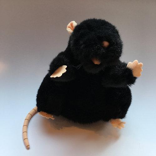 Handpop Rat
