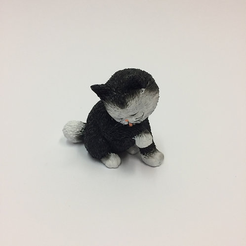"De katten van Dubout  ""Kitty wash"""