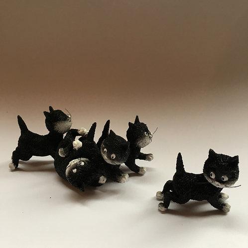 """De katten van Dubout  """"Follow me"""" zwart wit volg mij"""
