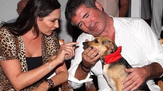 Simon Cowell and Lauren Silverman adopt Daisy the dog from K9 Friends in Barbados