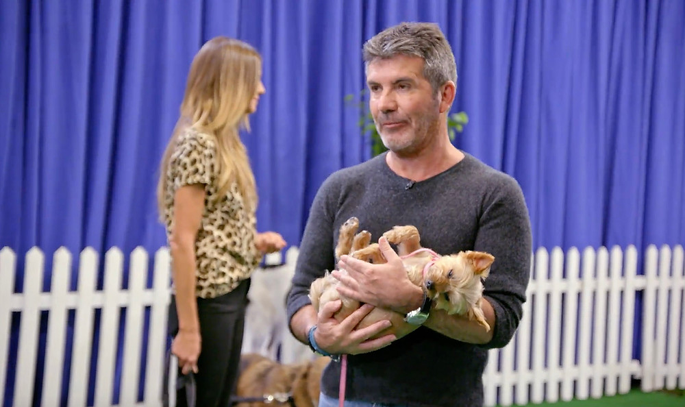 Simon Cowell with his dog Squiddly