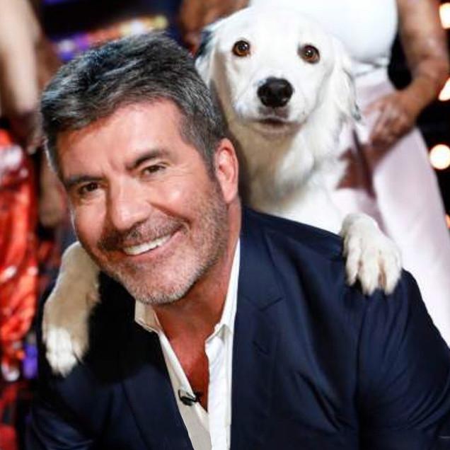 Simon Cowell with dog act on AGT