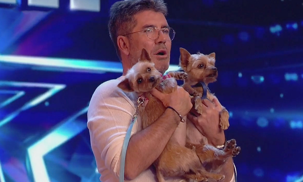 Simon Cowell with Squiddly and Diddly doing dog-yoga