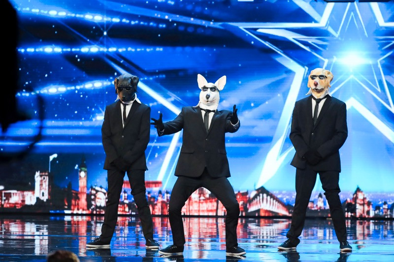 Paws With Soul on Britain's Got Talent 2017
