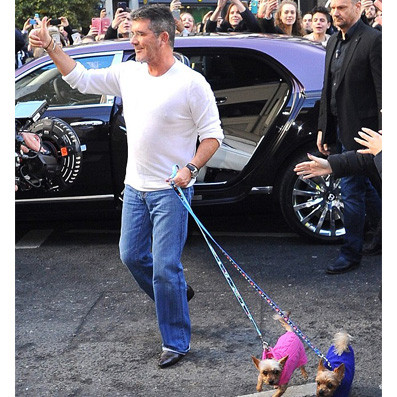 Simon Cowell with his dogs Squiddly & Diddly