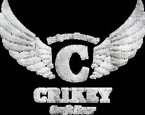 CRIKEY metal.png