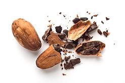 Cocoa Pods SwissOne