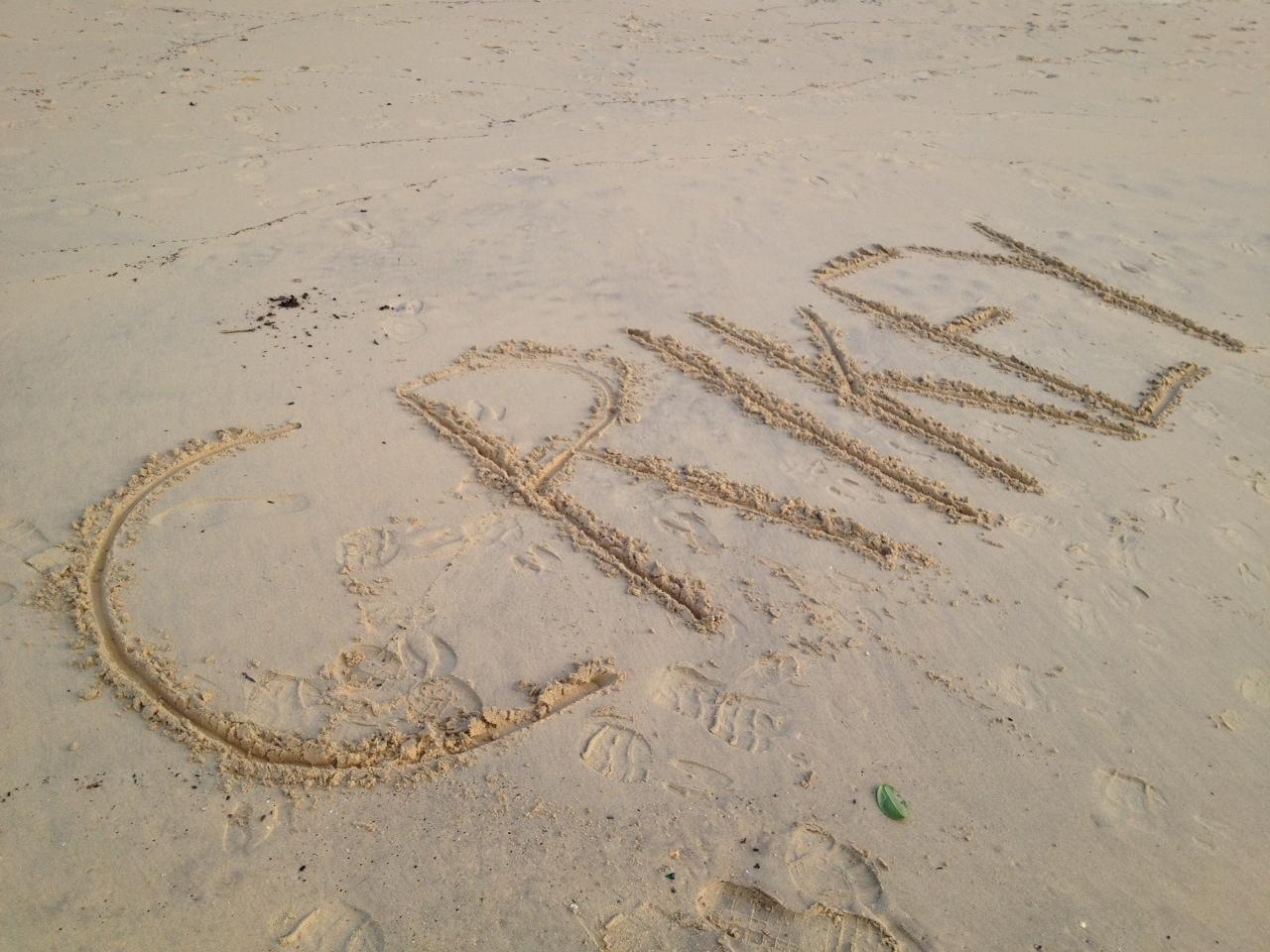 Crikey in sand.JPG