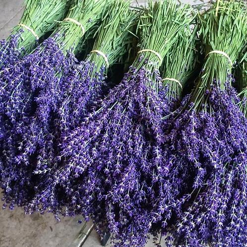 Fresh Lavender Bouquet