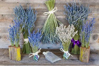 lavendar share-2.jpg