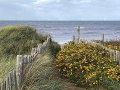 dunes 5.jpg