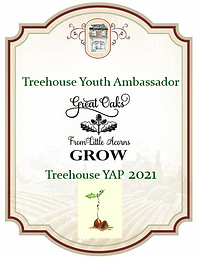 Treehouse YAP bADGE.png