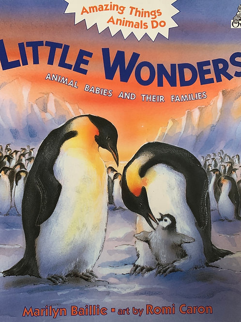 Amazing Things Animald Do Little Wonders