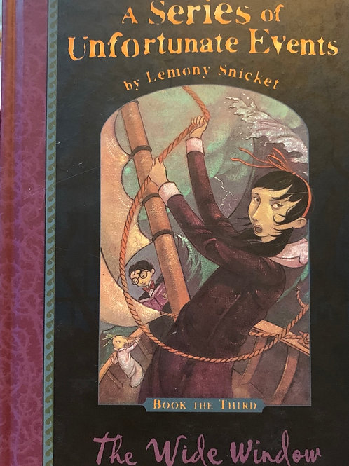 A series of Unfortunate Events by Lemony Snicket The wide window ( 3)