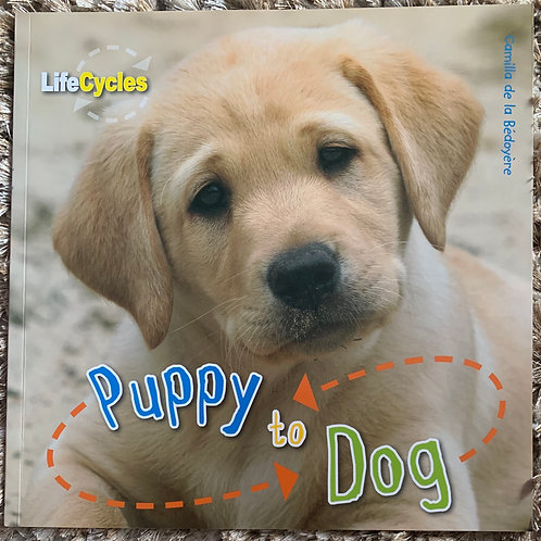 Life Cycles - Puppy to Dog