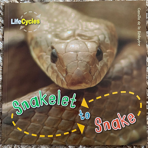 Life Cycles - Snakelet to Snake