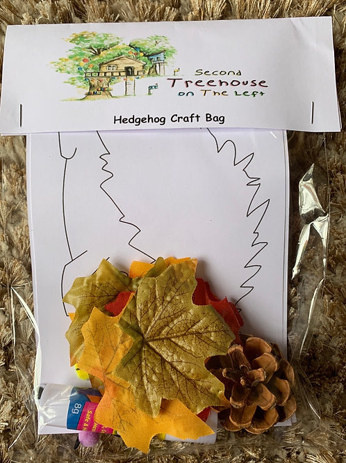 Hedgehog Craft Kit